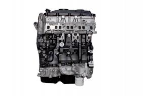 Nuovi prodotti Ford