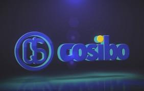 COSIBO - Speciale Automechanika 2016