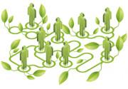 Green economy: incentivi per le aziende
