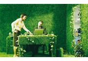 Lavoro 'green': le opportunità di impiego