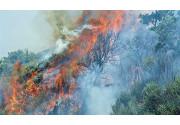 Come si previene il rischio incendi nelle autofficine