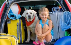 10 consigli per portare fido in vacanza con te