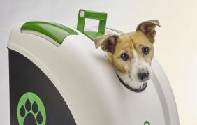 POW: il  bauletto per trasportare il tuo pet in moto e auto
