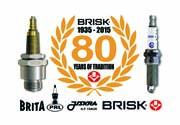 BRISK: nuovo sito web