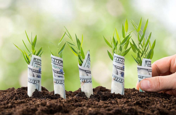 PMI: c'è il voucher per la digitalizzazione
